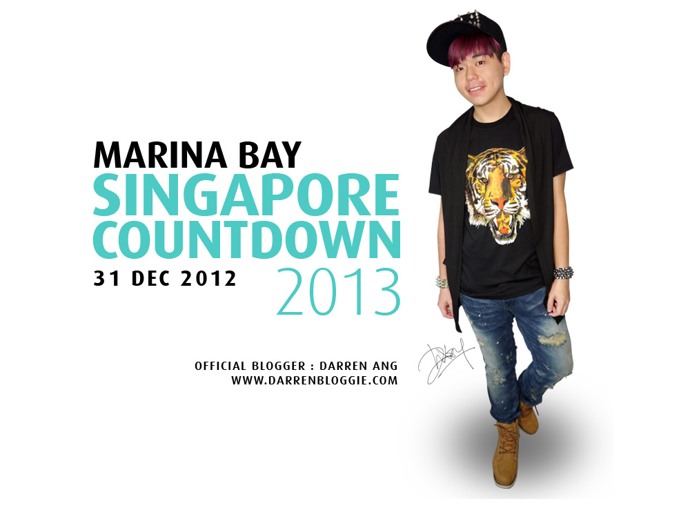 Survival Guide for Marina Bay Singapore Countdown 2013