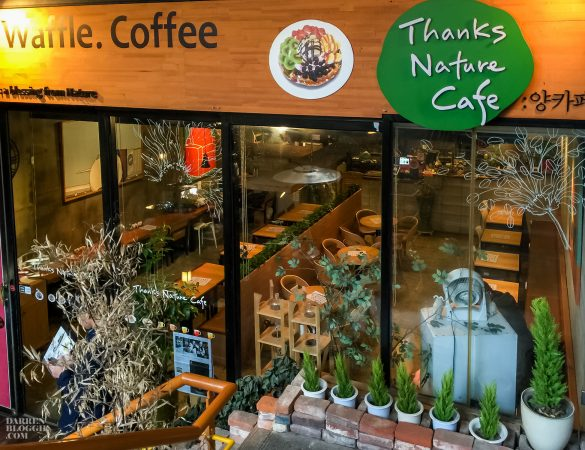 Meh~ Thanks Nature Cafe – A Sheep Cafe at Hongdae in Korea