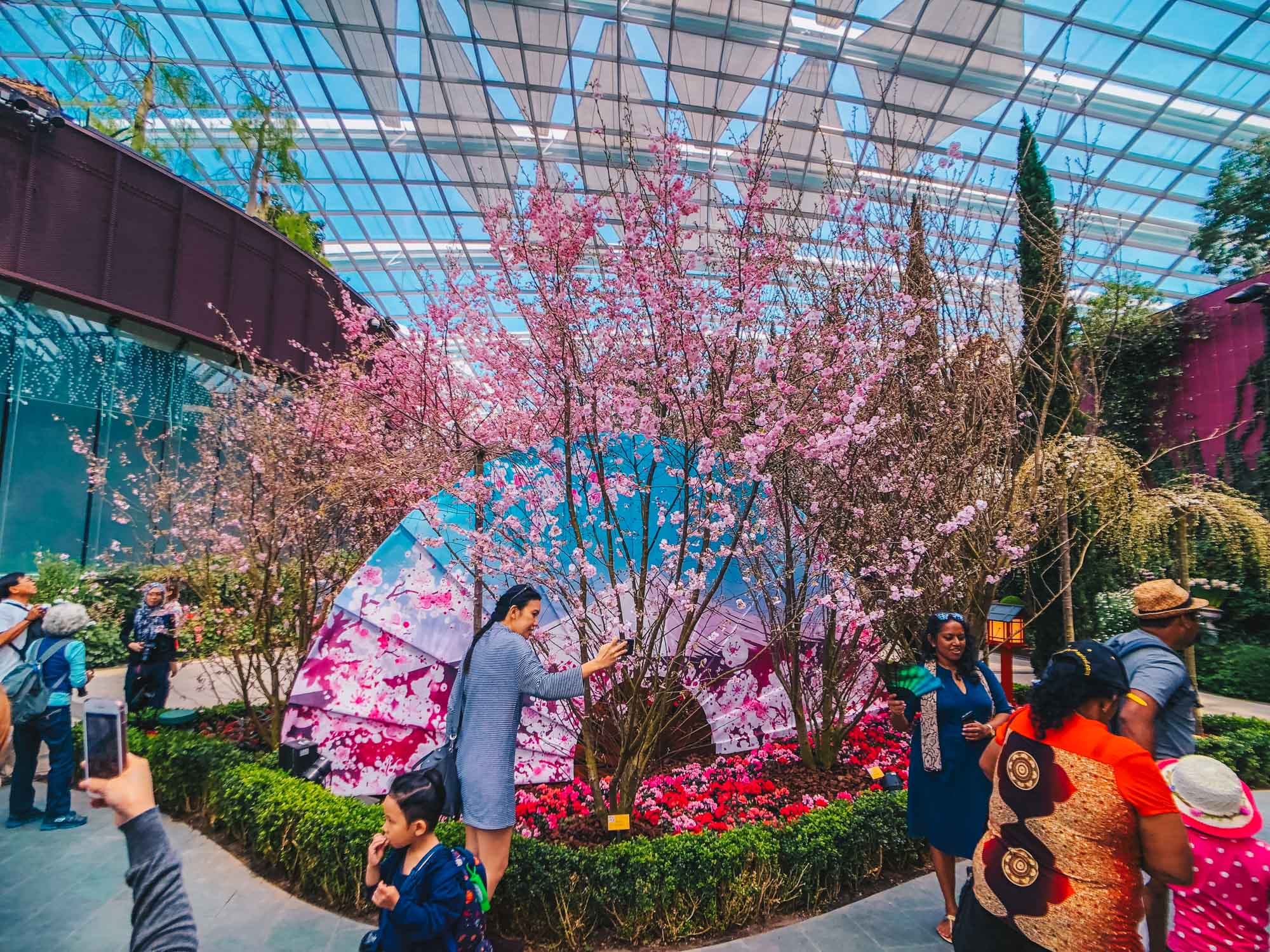 Sakura Matsuri at Gardens by the Bay