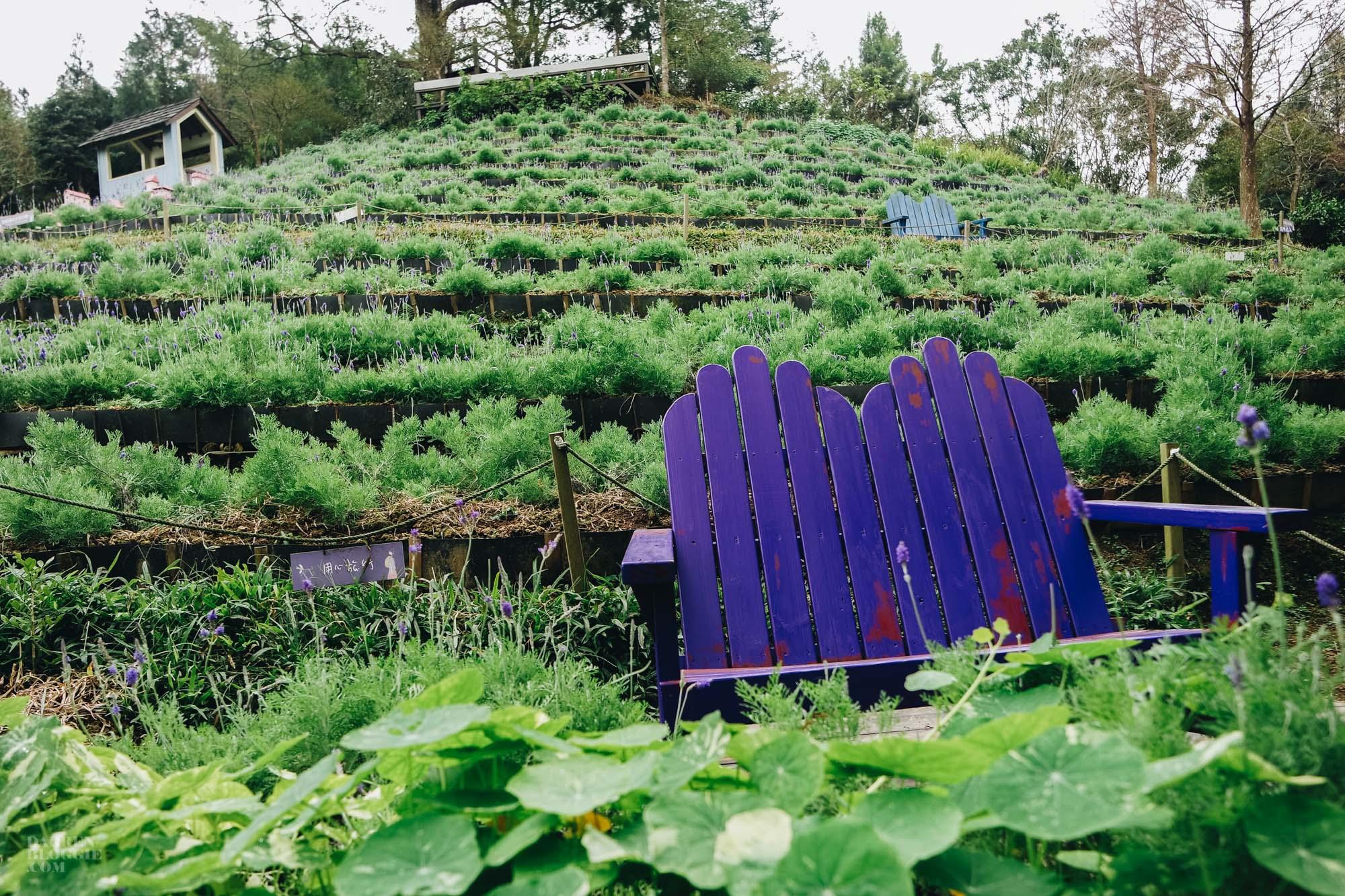 Lavender Cottage 薰衣草森林