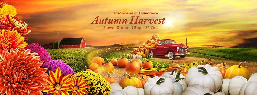 Autumn Harvest Floral Display