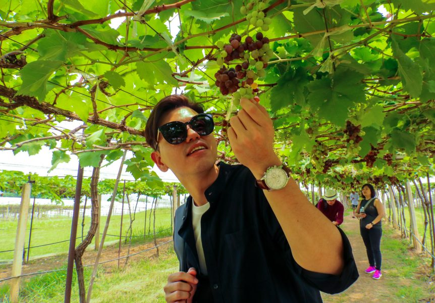Khao Yai PB Wine Valley darrenbloggie-6783