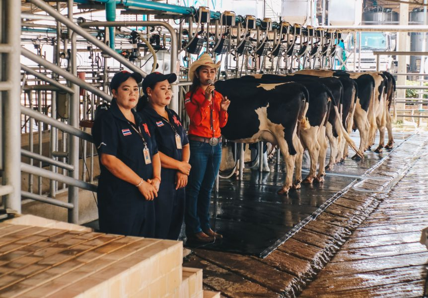 farm-chokchai-khaoyai-darrenbloggie-7174