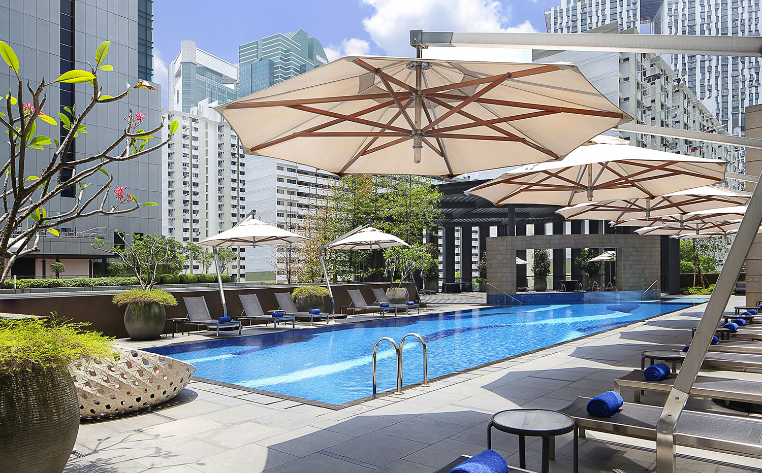 Carlton-City-Hotel-Singapore---Swimming Pool