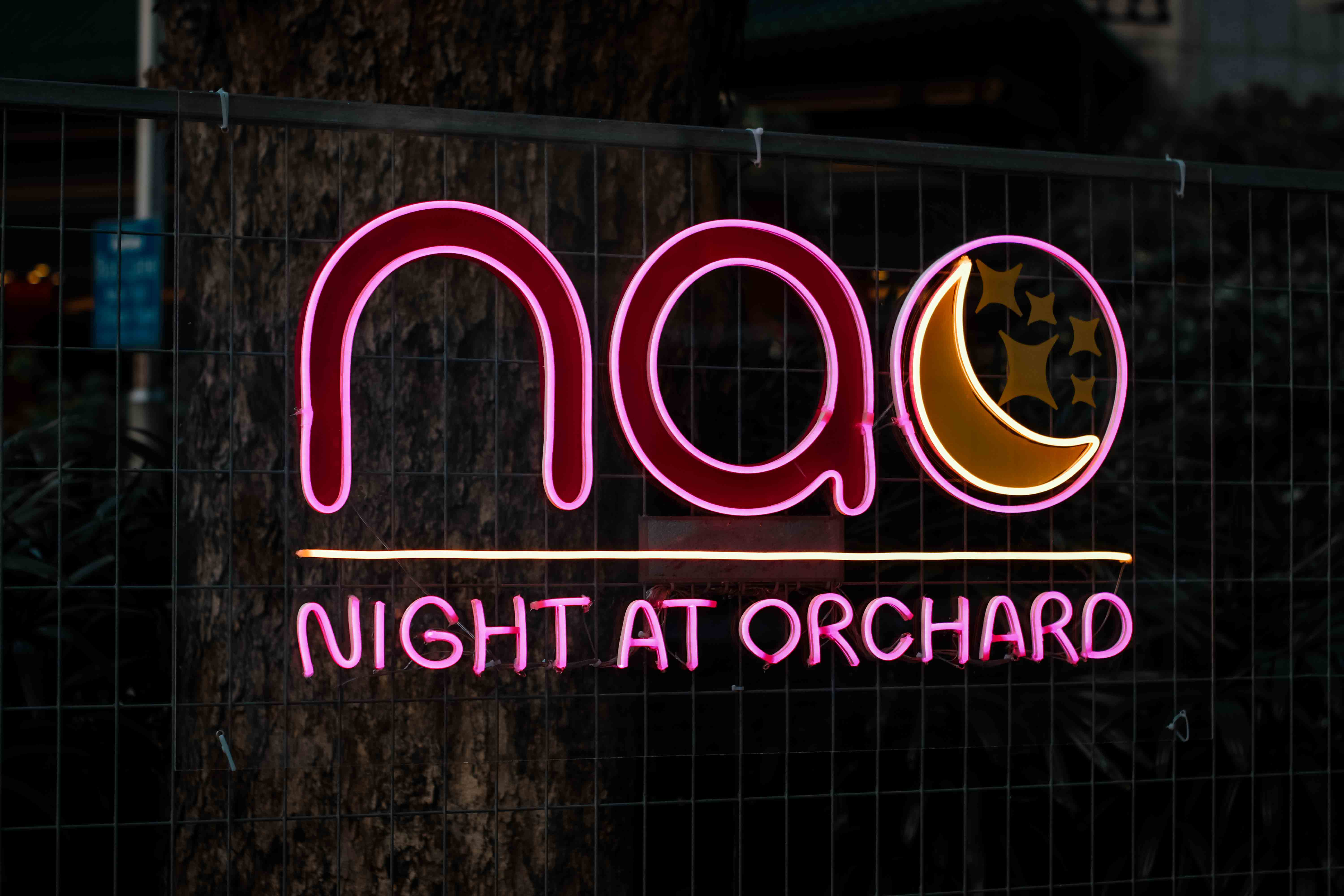 NAO-Night-At-Orchard-darrenbloggie