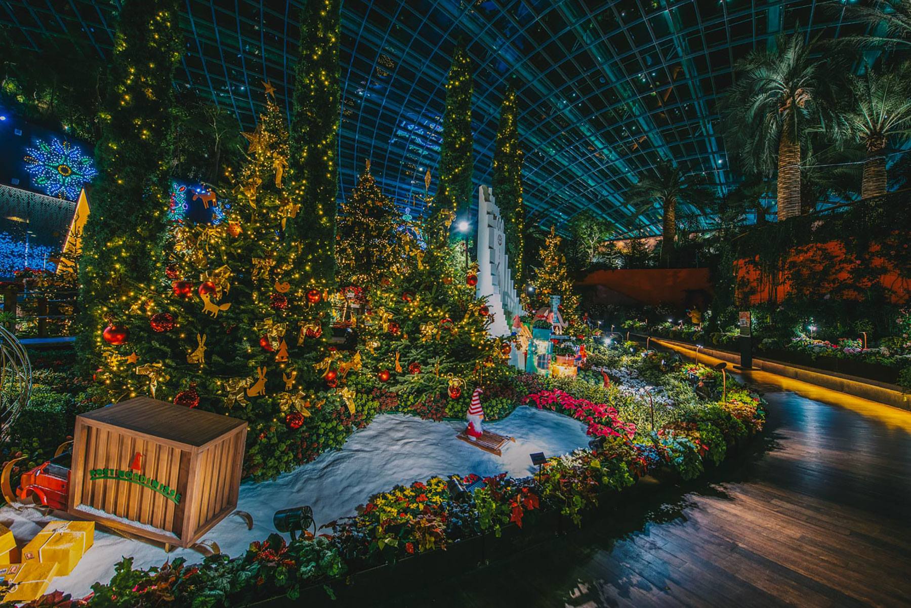 Poinsettia Wishes floral display at Gardens by the Bay