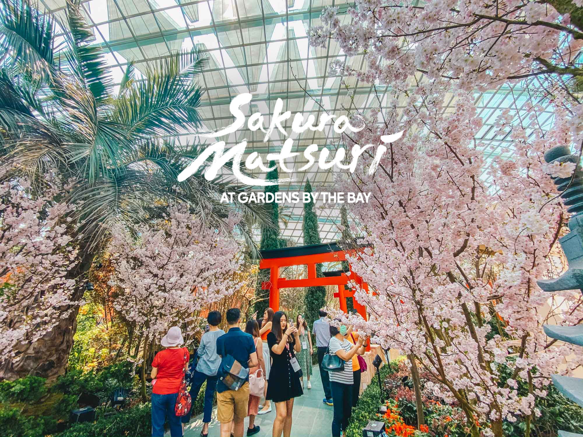 Sakura Matsuri at Gardens by the Bay 2020