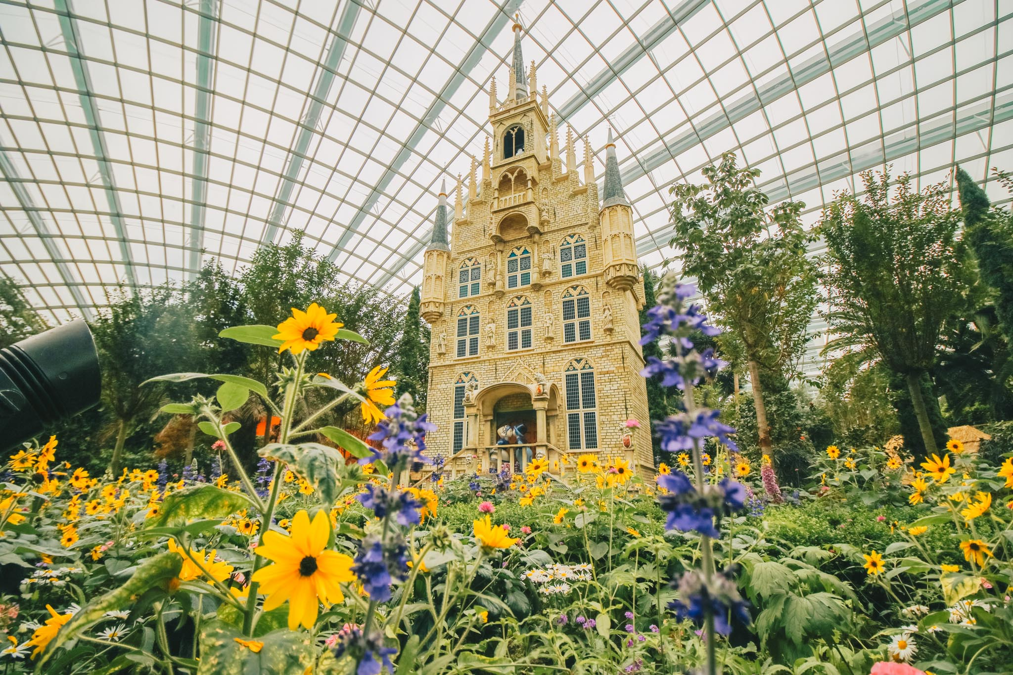 Generic-Display-Flower-Dome