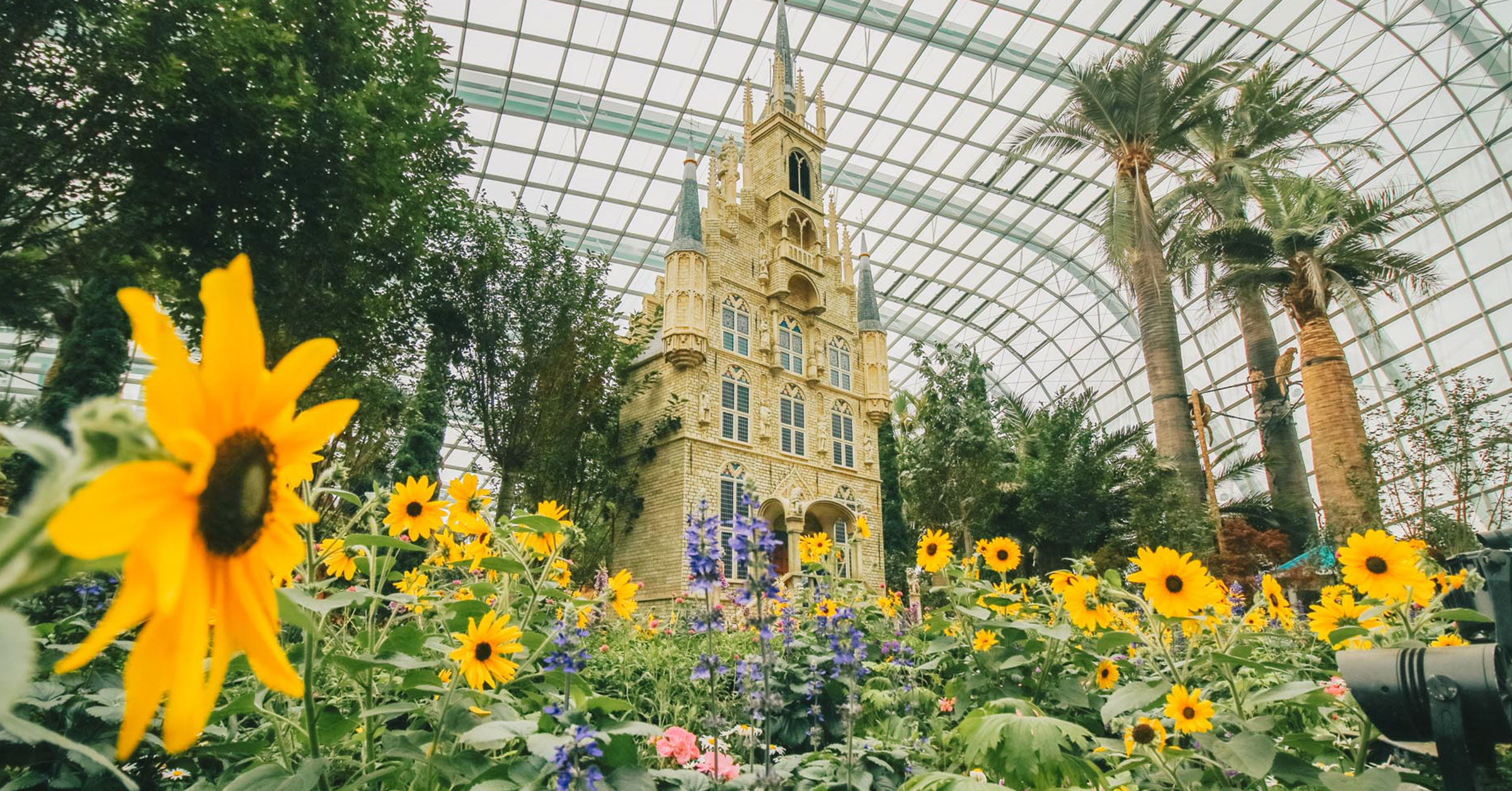 flower-dome-gardens-by-the-bay-reopen-01-july-2020-featured