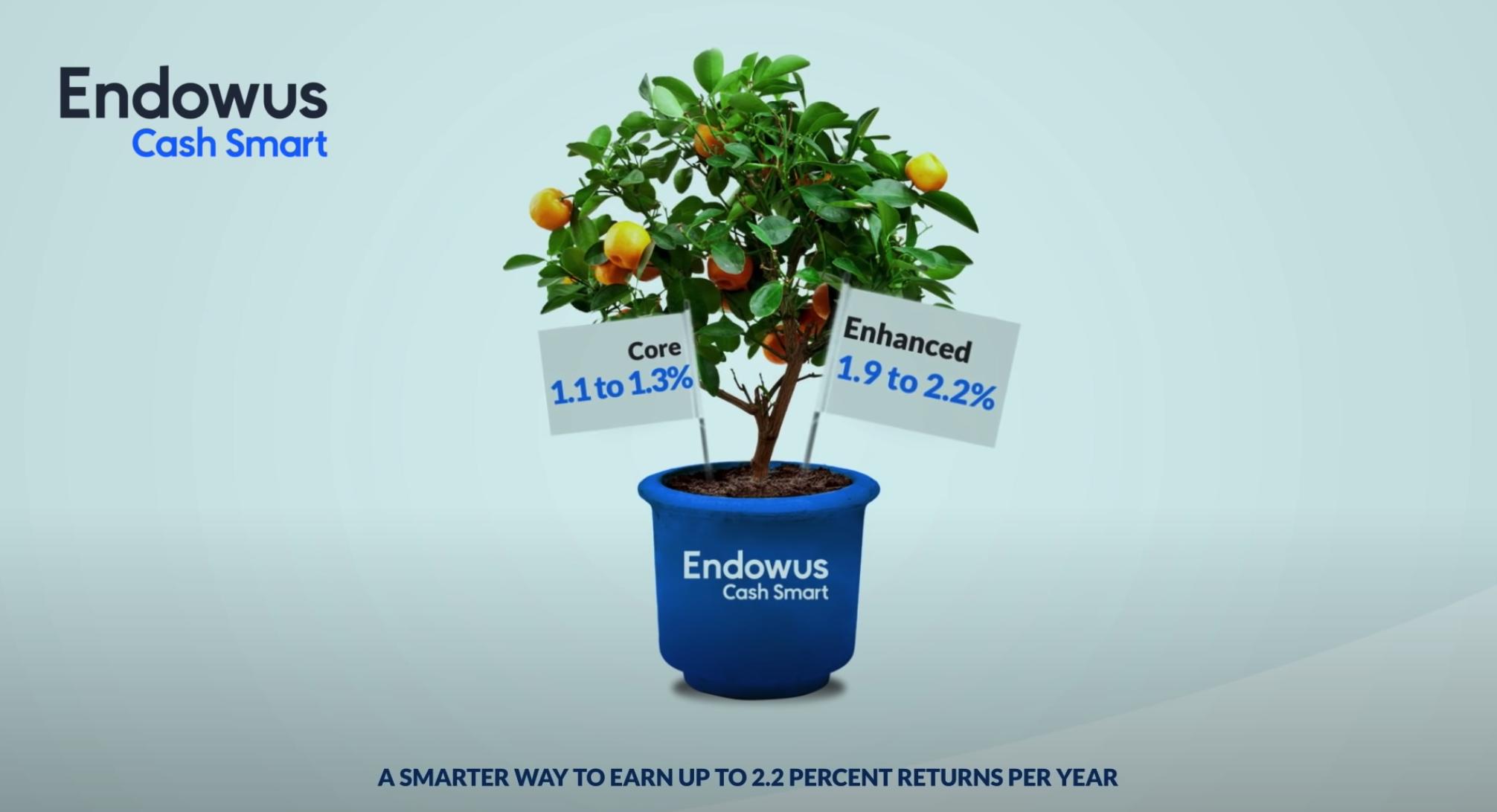 Endowus Cash Smart
