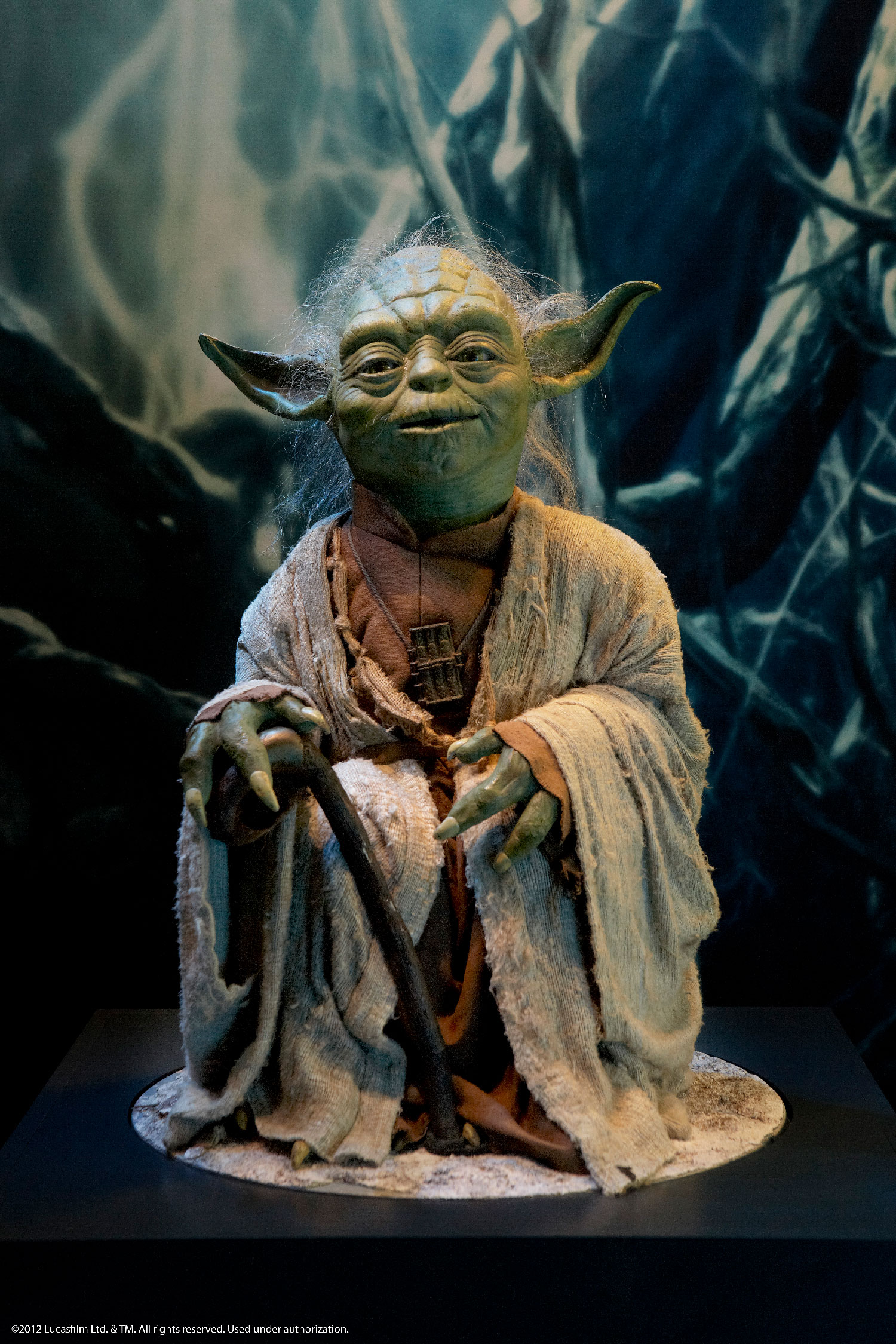 Star-Wars-Identities-exhibit---Yoda